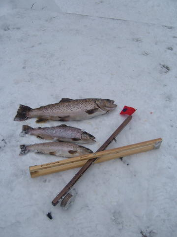 January ice fishing jack traps ice fishing traps and tip for Ice fishing traps